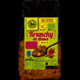 Krunchy Avena Manzana y Canela Bio Sin Gluten 350 Gr