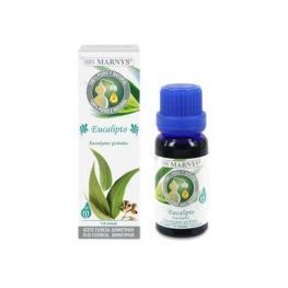 Aceite Esencial Eucalipto 15 Ml