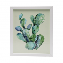 Cuadro 3021 Medidas 20X25 Cactus