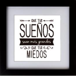 Cuadro 30X30 6000 Frases Blanco