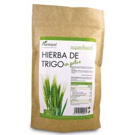 Hierba de Trigo Polvo 200Gr. Bio