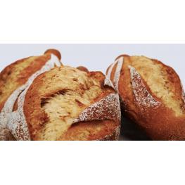 Pan de Trigo Persa 600Gr Ecológico