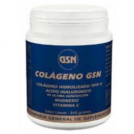 Colageno Gsn Polvo 340 Gr