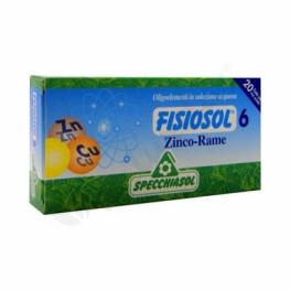 Fisiosol 6 Zinc Cobre 20 Ampollas