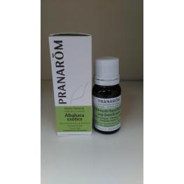 Aceite Esencial Albahaca Exótica 10 Ml