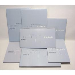 Loa Talonario T46 -Facturas- Octavo Nat