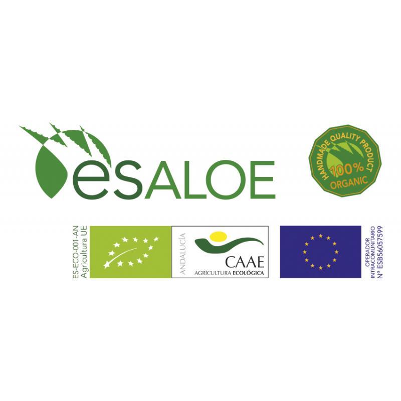 Dados de Gel de Aloe Vera Producto Ecológico
