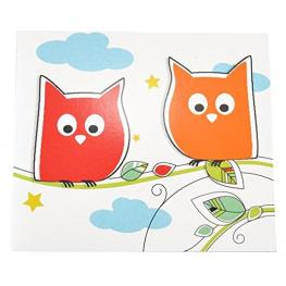 1X25 Daiber  Owl          13X18 Kids Portrait Folders