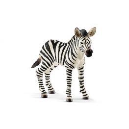 Schleich Wild Life         14811 Zebra Fohlen