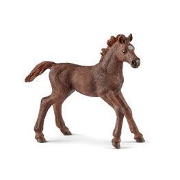 Schleich Horse Club        13857 Englisch Vollblut Fohlen