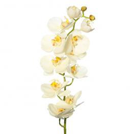 Rama Flores Orquídea Blanco Pvc Jardín 13 X 13 X 75 Cm