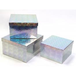 S/3 Caja Cuadrada Plata 22 X 22 X 13 Cm