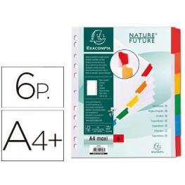Exacompta Separador de Cartulina Blanca+Pestala de Color A4+ 6Posiciones Ref.4306E
