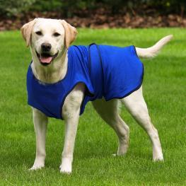 Pawhut Chaqueta Chaleco de Refrigeración Perro Ropa de Verano Chaleco Para Mascotas Chaqueta Refrescante Perro Espalda 60Cm Poliéster - Color: Azul