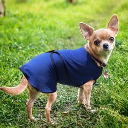 Pawhut Chaqueta Chaleco de Refrigeración Perro Ropa de Verano Chaleco Para Mascotas Chaqueta Refrescante Perro Espalda 40Cm Poliéster<br> - Color: Azu
