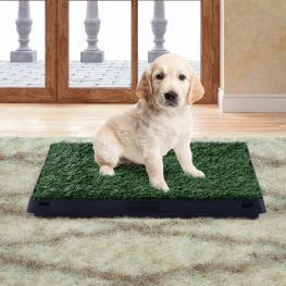 Pawhut® Inodoro Para Perros Con Cajón Efecto Hierba Plástico y Césped Pe 51X63X6 Cm - Color: Verde y Negro