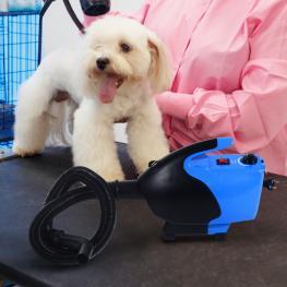 Pawhut Secador de Pelo Profesional Para Perros Gatos y Mascotas Con Temperatura y Velocidad Ajustable - Color Azul y Negro - Abs - ?26 X 40 Cm - Color