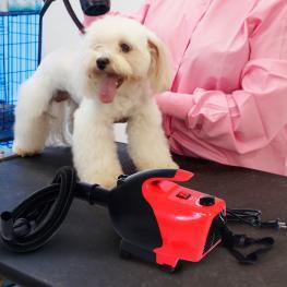 """Secador Pelo Perros y Mascotas Potencia 2600W Φ26X40Cm 43-65 """"� Rojo y Negro Nue - Color: Rojo y Negro"""