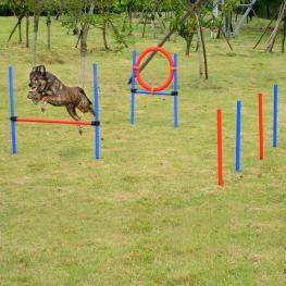 Set de Entrenamiento de Agilidad Para Perros Con Valla Aro y Postes - Color Azul y Rojo €� Polietileno - Color: Multicolor