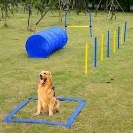 Set de Entrenamiento y Agilidad Para Perros Con Salto Túnel Slalom - Color Azul y Amarillo - Pe Tejido de Poliéster - Color: Azul