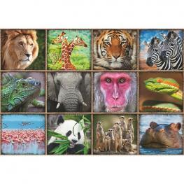 Puzzle Collage de Animales Salvajes 1000Pz