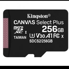 2566Gb Msd Csplus 100R A1 C10