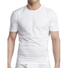 Camiseta M/c Impetus T/l Blanca
