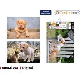 Alfombra 40X60Cm Pets 3S Digital Confortime